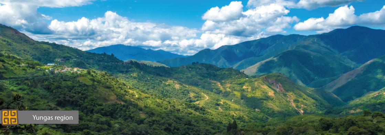 Yungas region Bolivia